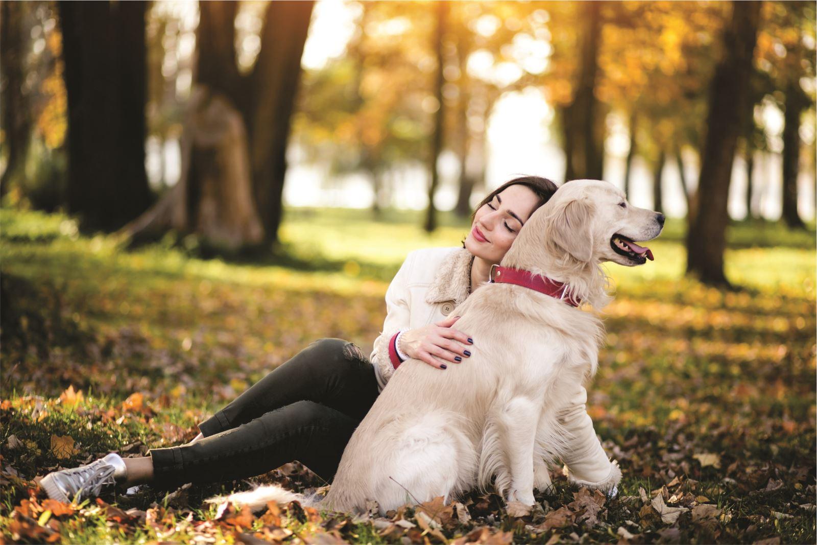 VNI ra mắt sản phẩm bảo hiểm chủ nuôi chó